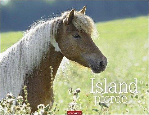 Islandpferde - Kalender 2020