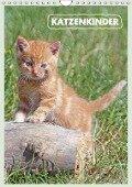 Katzenkinder (Wandkalender 2018 DIN A4 hoch) - Barbara Mielewczyk