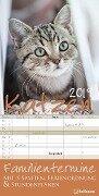 Katzen Familientermine 2019 Familienplaner -