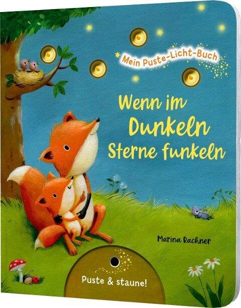 Mein Puste-Licht-Buch: Wenn im Dunkeln Sterne funkeln - Christina Nömer