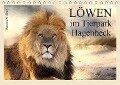Löwen im Tierpark Hagenbeck (Tischkalender 2019 DIN A5 quer) - Ramona Meißner