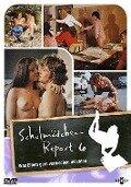 Schulmädchen-Report 06 - Was Eltern gern vertuschen möchten - Günther Heller, Gert Wilden