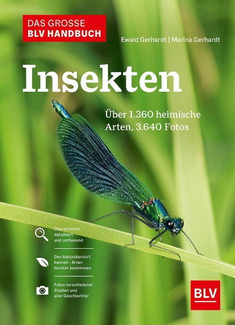 Das große BLV Handbuch Insekten - Ewald Gerhardt, Marina Gerhardt