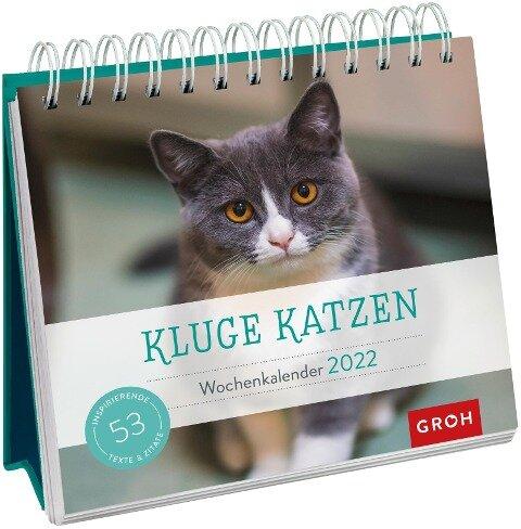 Kluge Katzen 2022 -