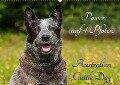 Power auf 4 Pfoten. Australian Cattle Dog (Wandkalender 2018 DIN A2 quer) Dieser erfolgreiche Kalender wurde dieses Jahr mit gleichen Bildern und aktualisiertem Kalendarium wiederveröffentlicht. - Sigrid Starick