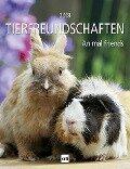 Tierfreundschaften 2018 -