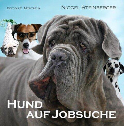 Hund auf Jobsuche - Niccel Steinberger