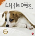 Little Dogs Broschurkalender 2018 - Monika Wegler
