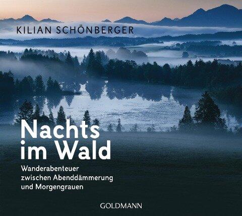 Nachts im Wald - Kilian Schönberger