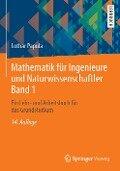 Mathematik für Ingenieure und Naturwissenschaftler 01 - Lothar Papula
