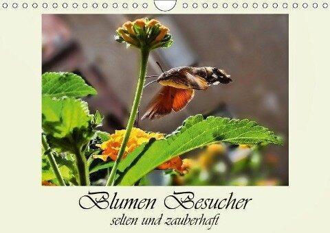 Blumen-Besucher - selten und zauberhaft (Wandkalender 2019 DIN A4 quer) - Dusanka Djeric