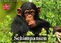 Schimpansen (Wandkalender 2018 DIN A4 quer) Dieser erfolgreiche Kalender wurde dieses Jahr mit gleichen Bildern und aktualisiertem Kalendarium wiederveröffentlicht. - Elisabeth Stanzer