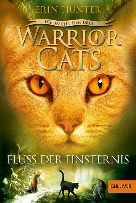 Warrior Cats Staffel 3/02. Die Macht der Drei. Fluss der Finsternis - Erin Hunter