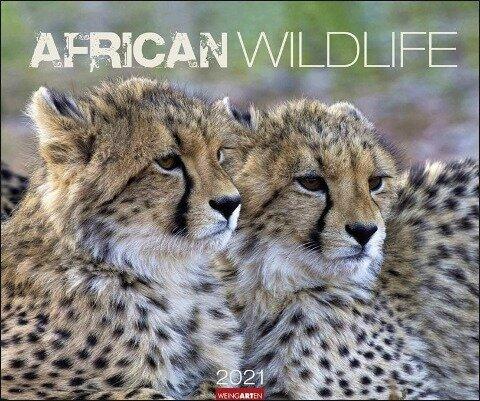 African Wildlife Kalender 2020