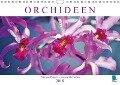 Orchideen: Filigrane Eleganz - prachtvolle Farben (Wandkalender 2018 DIN A4 quer) Dieser erfolgreiche Kalender wurde dieses Jahr mit gleichen Bildern und aktualisiertem Kalendarium wiederveröffentlicht. - K. A. Calvendo