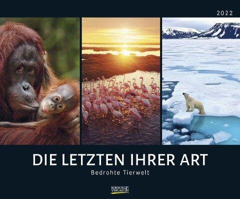 Bedrohte Tierwelt 2022 -