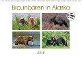 Braunbären in Alaska (Wandkalender 2018 DIN A2 quer) - Dieter-M. Wilczek