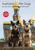Australian Cattle Dogs auf der Darmstädter Mathildenhöhe (Tischkalender 2018 DIN A5 hoch) Dieser erfolgreiche Kalender wurde dieses Jahr mit gleichen Bildern und aktualisiertem Kalendarium wiederveröffentlicht. - Fotodesign Verena Scholze