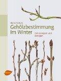 Gehölzbestimmung im Winter - Bernd Schulz