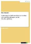 Umsetzung des Sarbanes-Oxley Act Section 404 und Auswirkungen auf die Abschlussprüfung - Felix Schmidt