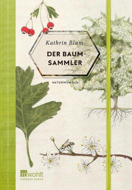 Der Baumsammler - Kathrin Blum