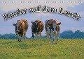 Rinder auf dem Lande (Tischkalender 2018 DIN A5 quer) - Bildagentur Geduldig
