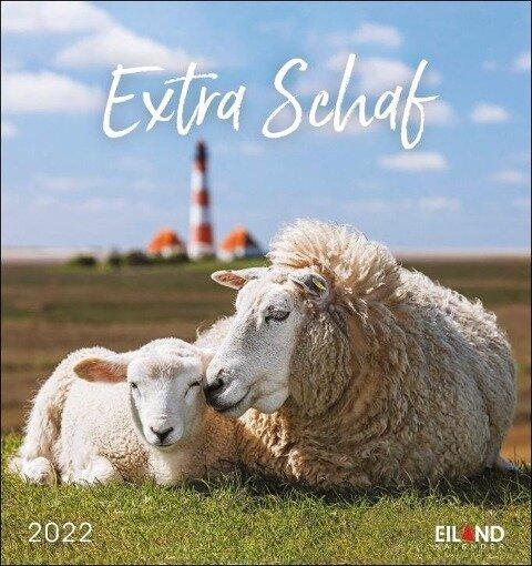 Extra Schaf 2022 - Postkartenkalender -