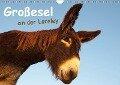 Großesel an der Loreley (Wandkalender 2018 DIN A4 quer) - Meike Bölts