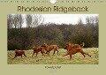 Rhodesian Ridgeback Powerpaket (Wandkalender 2018 DIN A4 quer) - Dagmar Behrens