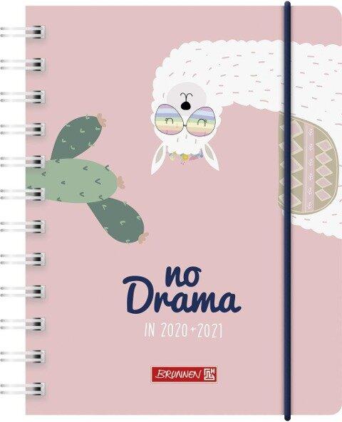 BRUNNEN 1071750031 Tageskalender/Schülerkalender 2020/2021 Lama Drama -