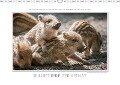 Emotionale Momente: Wilde Tiere der Heimat. / CH-Version (Wandkalender 2017 DIN A3 quer) - Ingo Gerlach Gdt