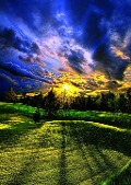 Phil Koch, Sommerspaziergang. Puzzle 1000 Teile -