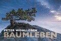 Baumleben 2019 Wandkalender - Peter Wohlleben