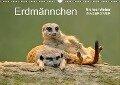 Erdmännchen - Tierkinder (Wandkalender 2018 DIN A3 quer) - Michael Weber
