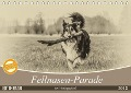 Fellnasen-Parade im Vintagelook (Tischkalender 2018 DIN A5 quer) Dieser erfolgreiche Kalender wurde dieses Jahr mit gleichen Bildern und aktualisiertem Kalendarium wiederveröffentlicht. - Sonja Teßen